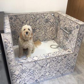 Bespoke Dog Washing Station